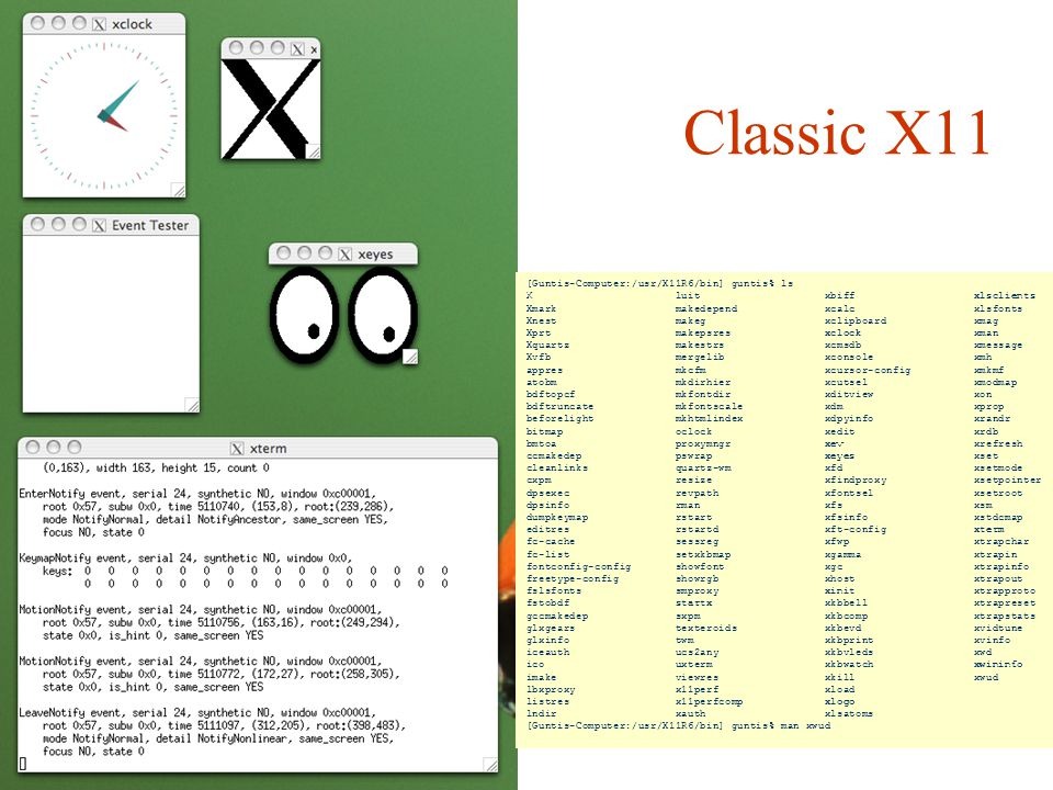 Classic X11 [Guntis-Computer:/usr/X11R6/bin] guntis% ls
